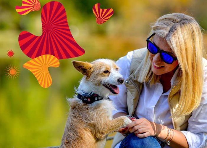 Vip: MyKi Pets promotion