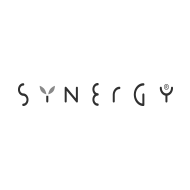Logo_WEB_Synergy